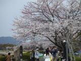 2008_04hiroshima01