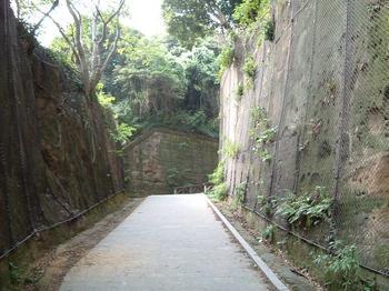 sarujima2.jpg